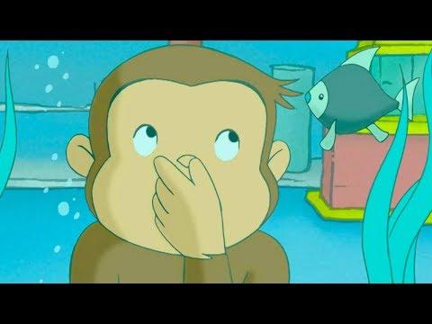 Jorge el Curioso en Español 🐵Jorge Quiere Ser como Hundley 🐵 Mono Jorge | Caricaturas para Niños