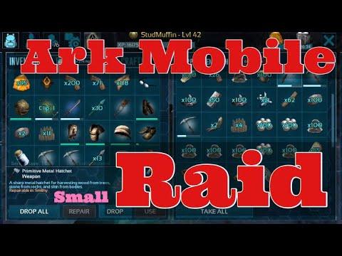 Ark Mobile RAID