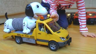The Boo Boo Story from Senya and his dog | Сеня лечит свою собаку упавшую с машины