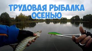Трудовая рыбалка на щуку осенью. Снова ZipBaits Orbit 110 спасает рыбалку