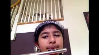 Do you want to build a snowman on flute