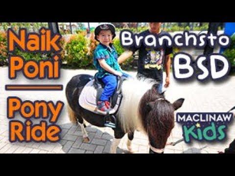 branchsto-bsd-horse-riding-|-naik-kuda-poni-tangerang-jakarta