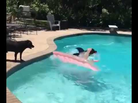 Horrific Shark Attack Footage Caught On Tape.