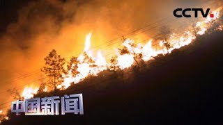 [中国新闻] 欧洲热浪持续 山火威胁严重 | CCTV中文国际