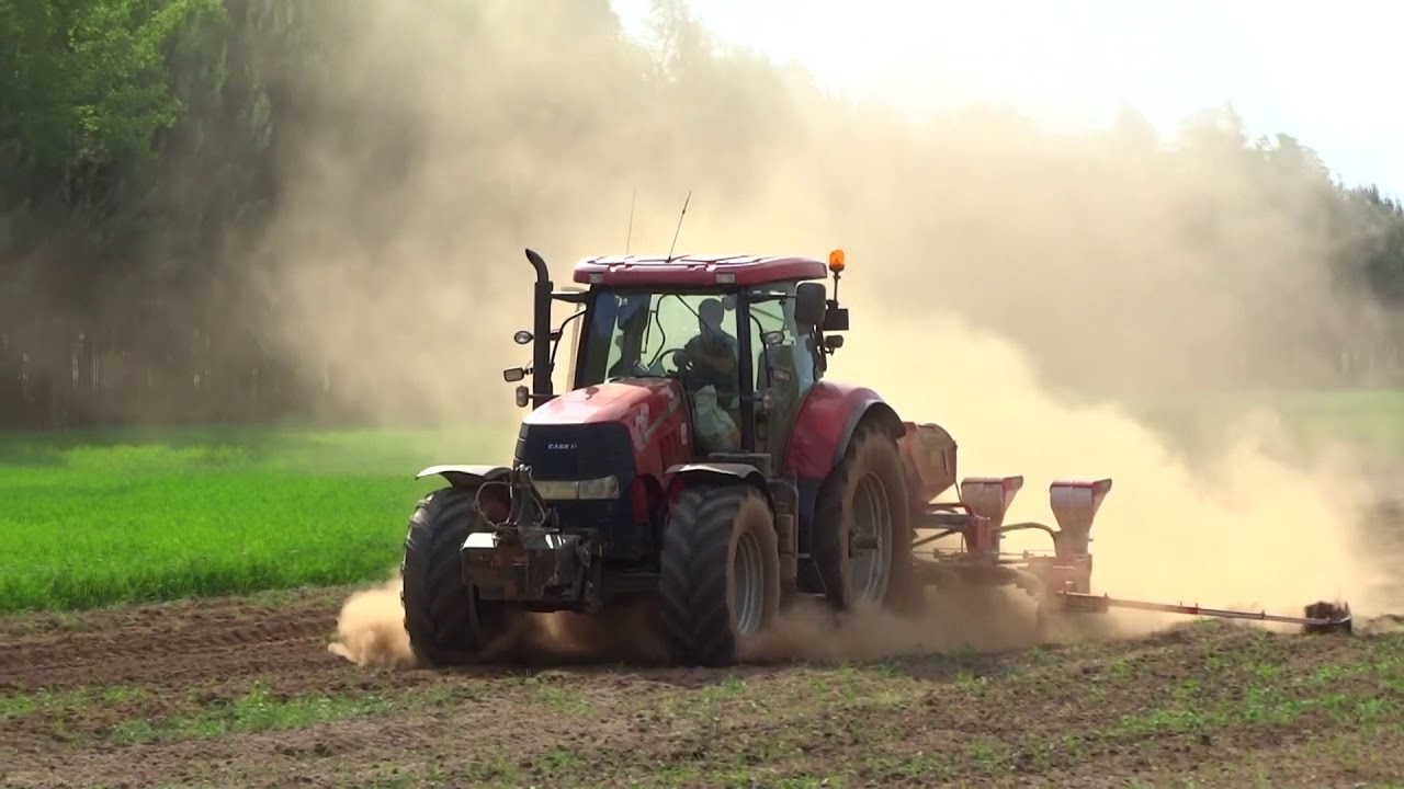 Siew kukurydzy 2018