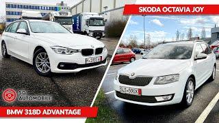 BMW из Германии в Беларусь и Octavia на 1000€ выше бюджета