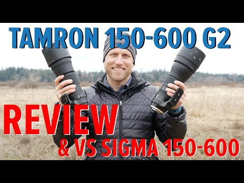 Tamron 150-600 G2 Review and VS Sigma 150-600 C Lens comparison