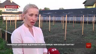 Ферма під Львовом експортує до ЄС 25 тонн равликів