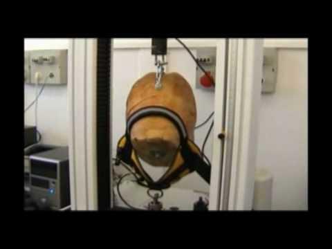 Julius-K9® Crash Test Clothing, dog harness, dog leash