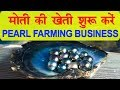 How to Start Pearl Farming in Small Area? Earn Good Profit.