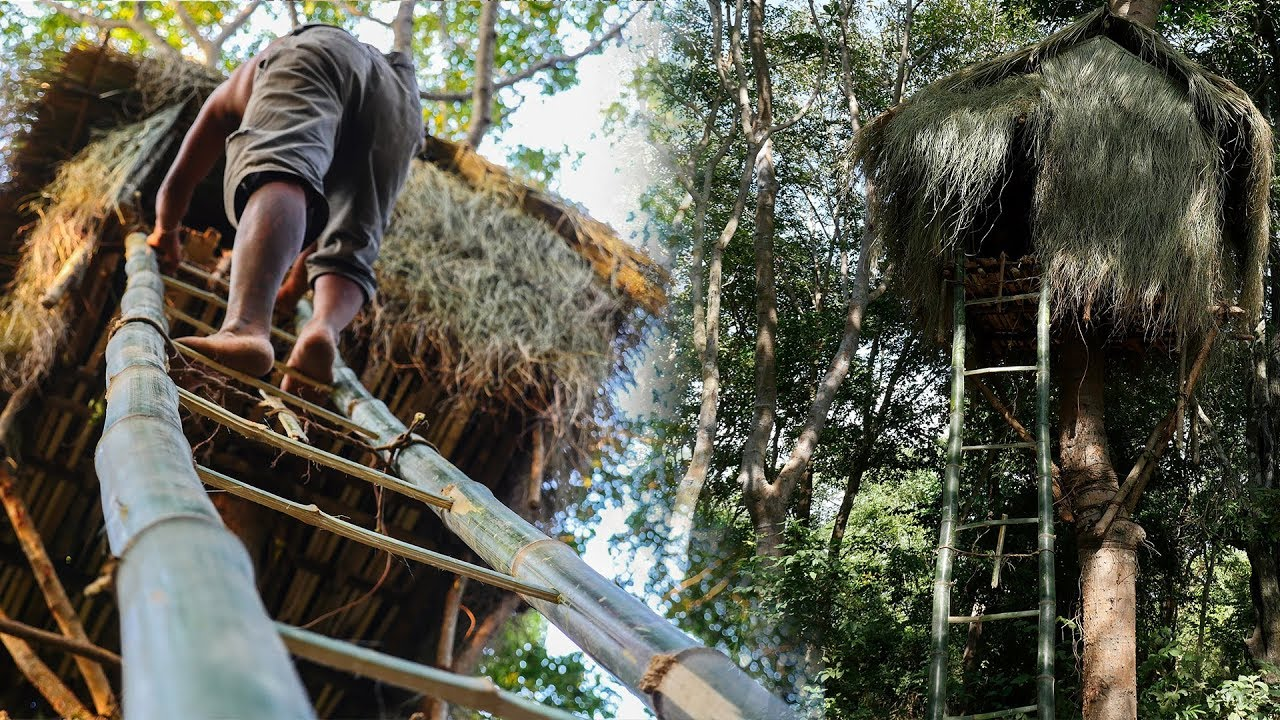 Primitive Technology Build Tree House In Forest End