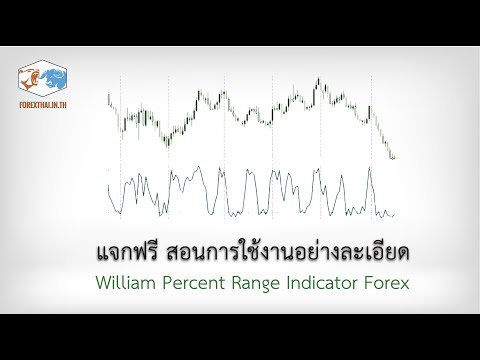 William Percent Range Indicator Forex แจกฟรี สอนการใช้งานอย่างละเอียด