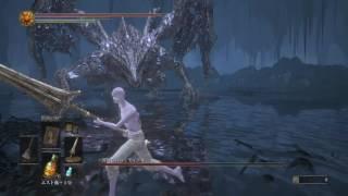 竜狩りの剣槍で申し訳程度のアンバサ要素を出しつつ結局近接でぶん殴る...
