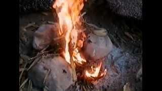 สาธิตวิธีการการก่อกองไฟ (Demonstrate how to build a fire )