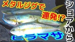 #2 釣った魚で1泊2日 ヒラマサが連発!?