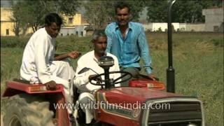 Tractor joy ride in rural Uttar Pradesh