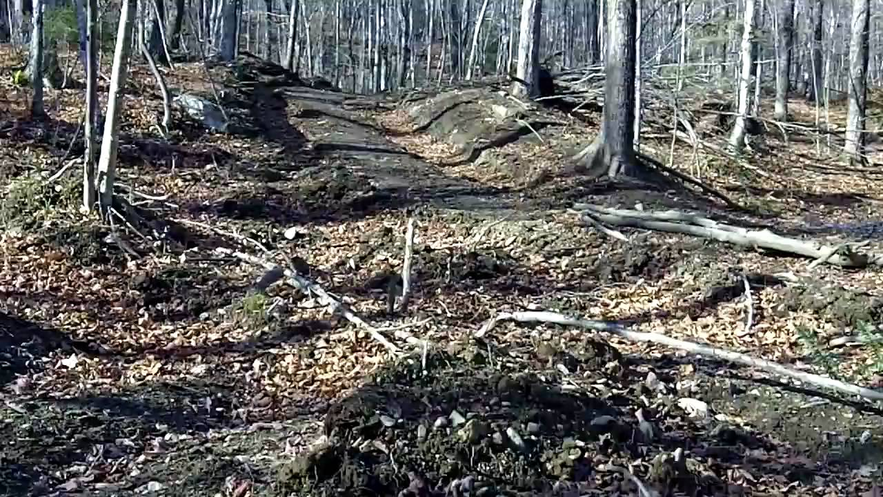 Example major soil erosion on forest access youtube for Soil is an example of