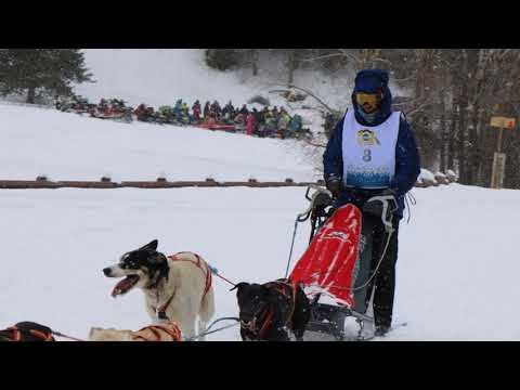 2018 Pedigree Stage Stop Dog Sled Race- Alpine, Wyoming.