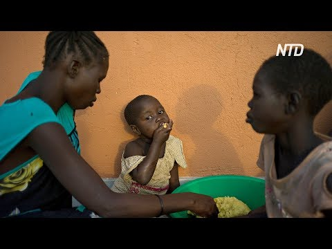 Каждый третий гаитянин нуждается в продовольственной помощи