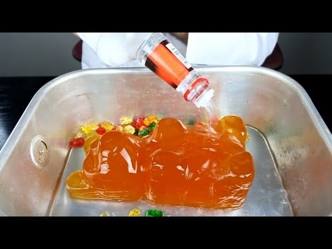 World Largest Gummy Bear Shots!