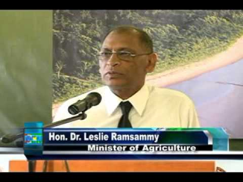 First Guyana mangrove forum hosted