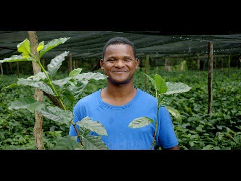 Det börjar med Fairtrade!