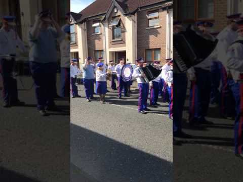 Glasgow rangers accordion band @ templepatrick 12th July 2017