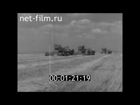 1964г. Саратовская область. Уборка урожая