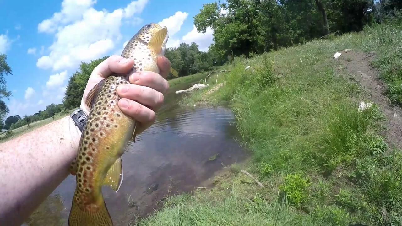 Trout fishing the maquoketa in iowa youtube for Trout fishing iowa