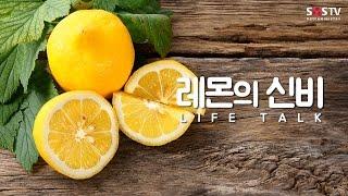 레몬의 신비 [라이프 토크 29회] - 여병주 의사