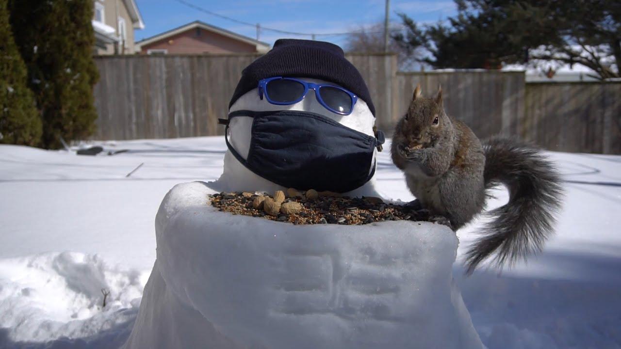 Snowman Squirrel Feeder - 10 Hours - February 25, 2021