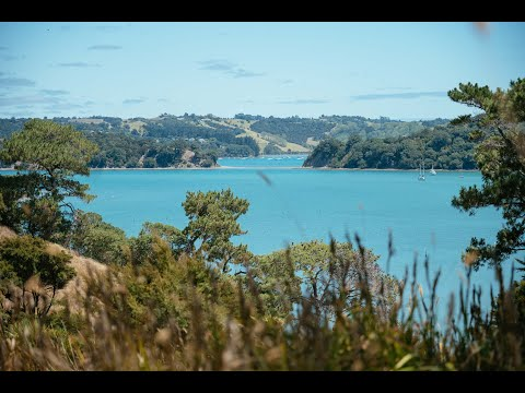 More Mahurangi land bought for Auckland's outdoors