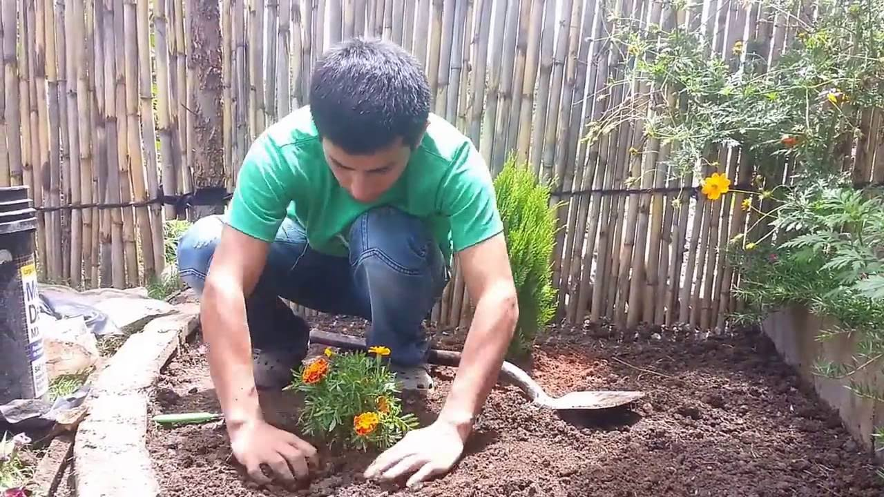 Dise o de jardines peque os parte iii ideas y consejos for Disenos jardines para patios pequenos