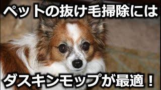 ペットの抜け毛掃除にお困りではありませんか? 東京都北区のダスキンフ...