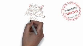 Смешные нарисованные коты Как нарисовать гламурного кота поэтапно