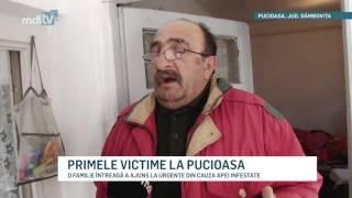 PRIMELE VICTIME LA PUCIOASA