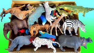 Lot Of Zoo Wild Animals/Real Safari Videos And Schleich Toys/Learn Colors For Children