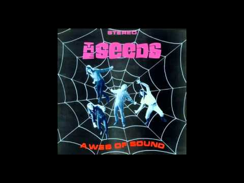 The Seeds - A Web Of Sound (1967) Full Album