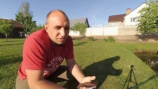 Видео ответ//Сколько сена нужно гусю на зиму//Глисты травить или нет