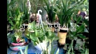 칠곡꽃배달 변환동 0001