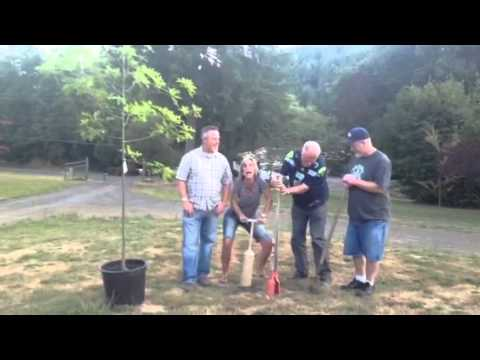 Planting Grandma's tree with a clam gun