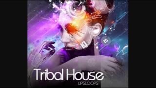 Paradise (Daniel Vega Belmonth Original Mix) Trival House Music.