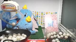 Toreba WIN Ping Pong![Dumbo - Giga Jumbo Lying Down Plushy]!!