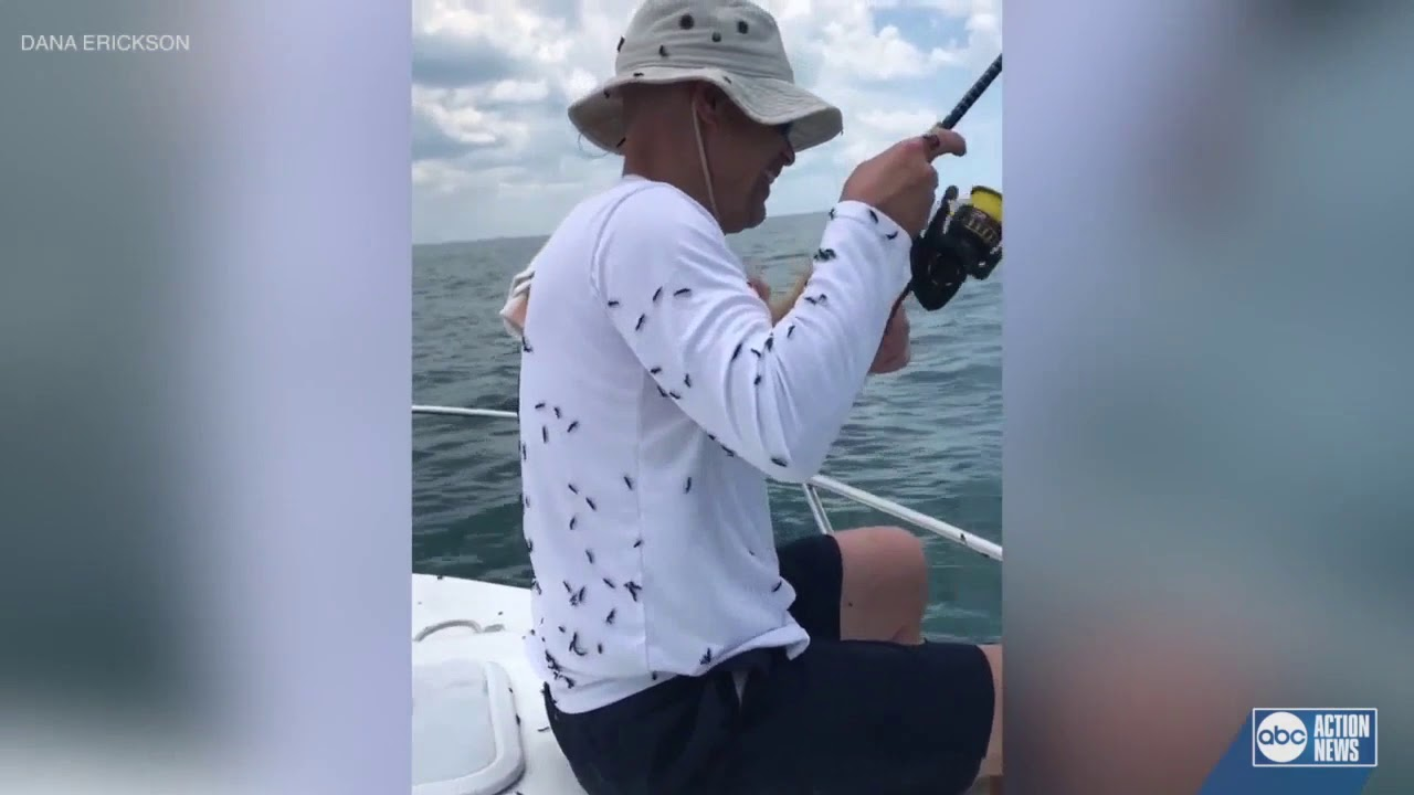 FLORIDA: WHITE WOMAN'S FISHING TRIP RUINED BY LOVE BUGS