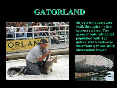 Why go to Central Florida? - By LuxuryDisneyVillas.co.uk