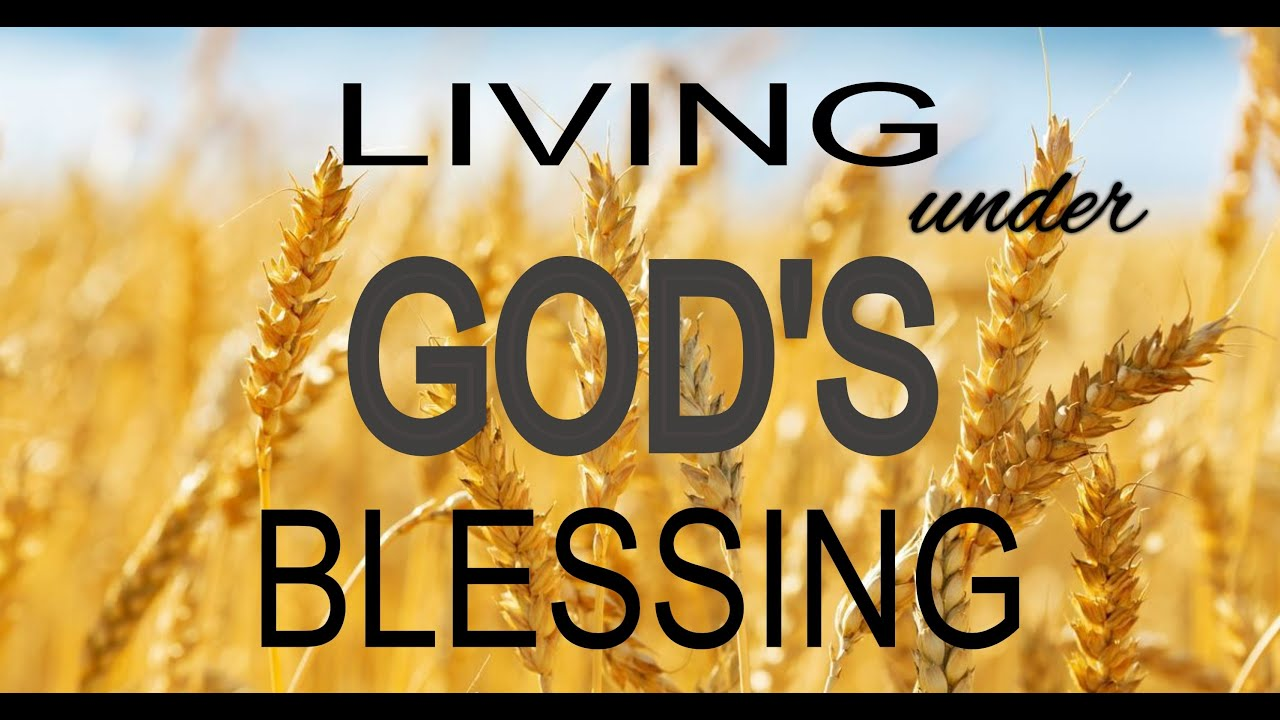 God's Blessing To The Workers In The Vineyard... Time Of Trouble...(2 Corinthians 9:6-8/Psalm 101:6)