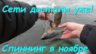 Спиннинг в ноябре на озере поймали сеть как они достали ну и щучка ловилась хорошо