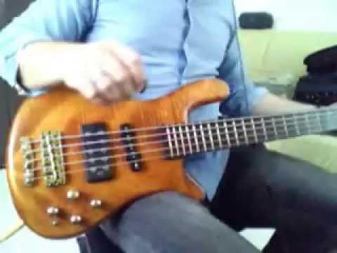 Stranded   Gojira [Bass Cover]