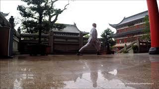 Shaolin Qi Gong Ba Duan Jin
