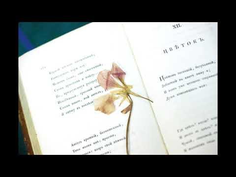 Цветок. Пушкин Александр Сергеевич